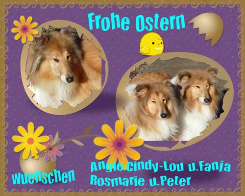 An den Beitrag angehängtes Bild: http://colliewelt.de/whitehorsehill/Bilder/Userbilder/670.jpg