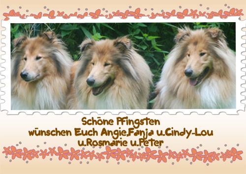 An den Beitrag angehängtes Bild: http://colliewelt.de/whitehorsehill/Bilder/Userbilder/694.jpg