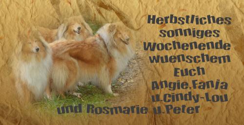 An den Beitrag angehängtes Bild: http://colliewelt.de/whitehorsehill/Bilder/Userbilder/841.jpg