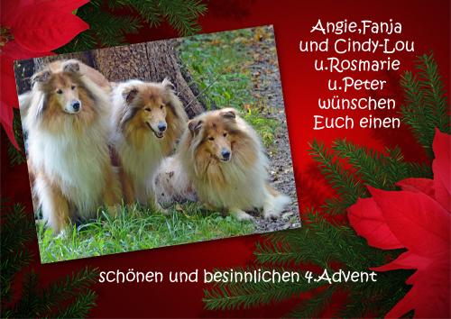 An den Beitrag angehängtes Bild: http://colliewelt.de/whitehorsehill/Bilder/Userbilder/887.jpg