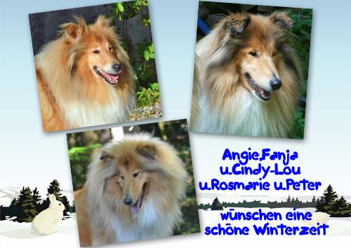 An den Beitrag angehängtes Bild: http://colliewelt.de/whitehorsehill/Bilder/Userbilder/902.jpg