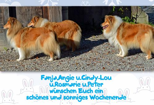 An den Beitrag angehängtes Bild: http://colliewelt.de/whitehorsehill/Bilder/Userbilder/924.jpg