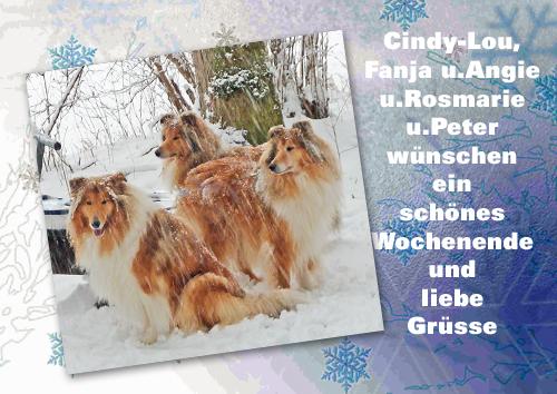 An den Beitrag angehängtes Bild: http://colliewelt.de/whitehorsehill/Bilder/Userbilder/953.jpg