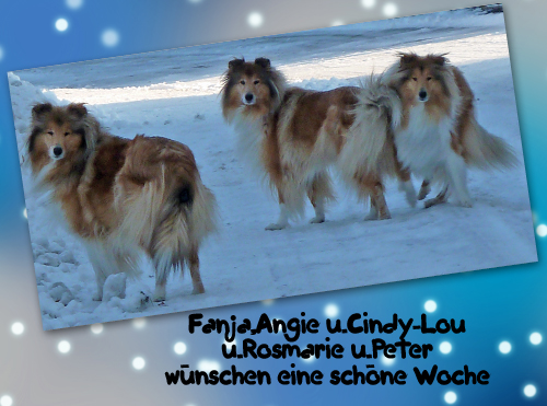An den Beitrag angehängtes Bild: http://colliewelt.de/whitehorsehill/Bilder/Userbilder/965.jpg