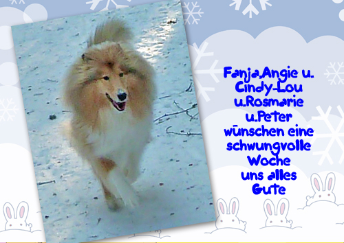 An den Beitrag angehängtes Bild: http://colliewelt.de/whitehorsehill/Bilder/Userbilder/969.jpg