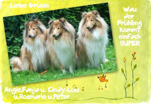 An den Beitrag angehängtes Bild: http://colliewelt.de/whitehorsehill/Bilder/Userbilder/971.jpg