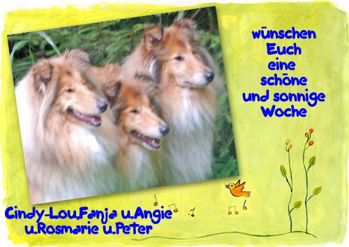 An den Beitrag angehängtes Bild: http://colliewelt.de/whitehorsehill/Bilder/Userbilder/973.jpg