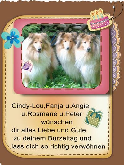 An den Beitrag angehängtes Bild: http://colliewelt.de/whitehorsehill/Bilder/Userbilder/976.jpg